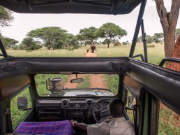 Travel to Tanzania with Bare Escap