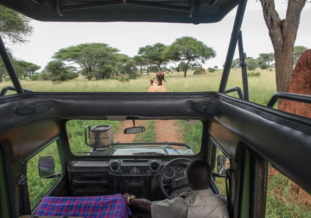 Best Safari in Tanzania by Bare Escape