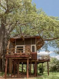 Tarangire Treetops, Tarangire National Park, Northern Tanzania