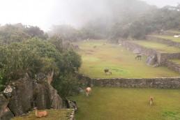Machu Picchu | Bare Escape