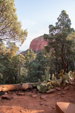 3 Of The Best Hikes In Sedona Arizona You Don't Want To Miss