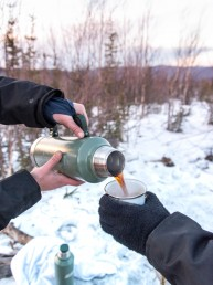 6 Of The Best Winter Activities In Fairbanks | Bare Escape