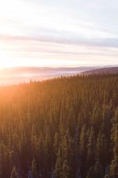 6 Of The Best Winter Activities In Fairbanks | Bare Escape