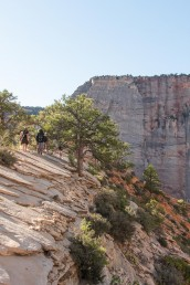 The top of Angels Landing in Zion National Park in Utah