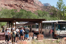 How To Catch The Shuttle Bus In Zion National Park | Bare Escape